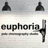 Euphoria pole choreography studio