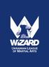 WIZARD- Лига единоборств г. Киев